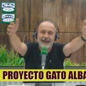 Entrevista gatos envenenados en Albarracín