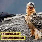 Entrevista a Juan Antonio Gil