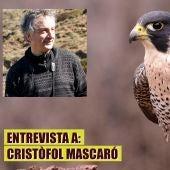 Entrevista a Cristòfol Mascaró