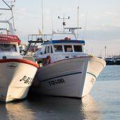 Pesqueros en el puerto de Santa Pola.