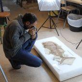 Fósil del pez descubierto por el MUPE.