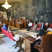 Pleno de la Diputación de Ciudad Real celebrado este viernes