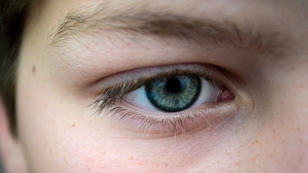 ¿Qué es el punto ciego de la vista?