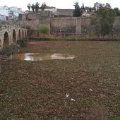 Río Guadiana a su paso por Badajoz