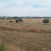 Terrenos del Polígono Industrial Sepes de Ciudad Real
