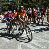 El pelotón durante la quinta, última y decisiva etapa de la 42ª Vuelta a Burgos, de 160 kilómetros, con salida en Covarrubias y llegada al alto de las Lagunas de Neila.