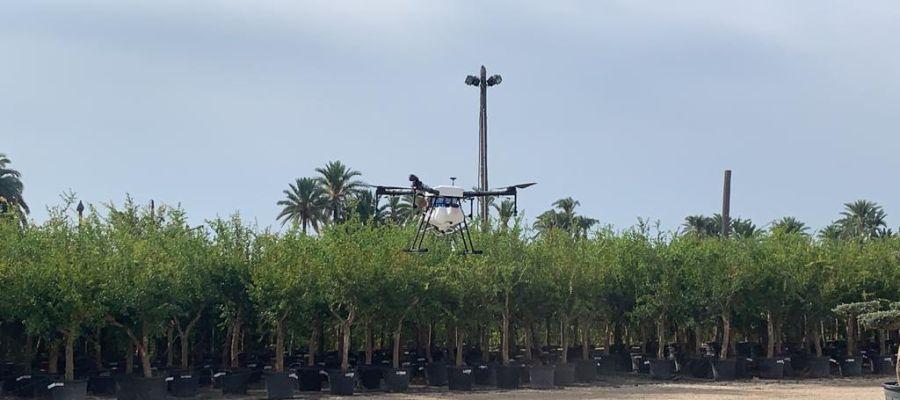 Dron para pulverizar larvicida contra los mosquitos en Elche.