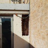 Panal de abejas en el Centro Hernandiano de Elche.