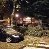 Destrozos tormenta Alcalá de Henares