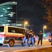 Al menos un muerto y varios heridos por un tiroteo en el centro de Viena