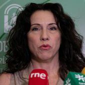Rocío Ruiz, Consejera de Igualdad
