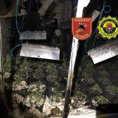 Plantación de marihuana en el interior de la nave incendiada