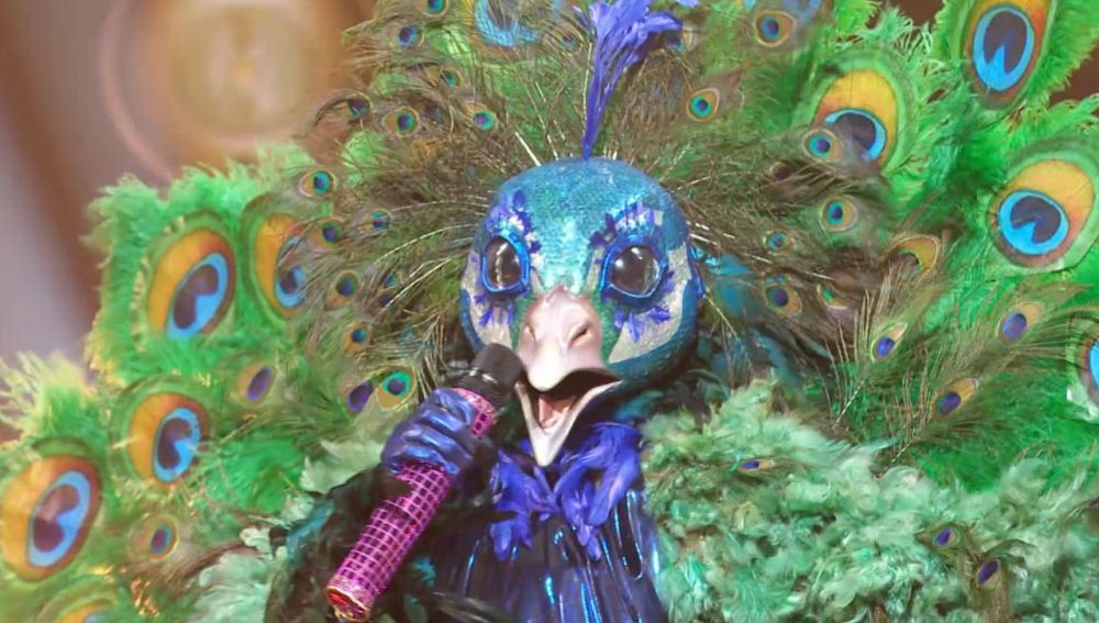 Mask Singer: El Pavo Real