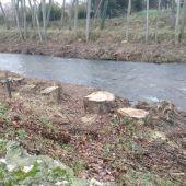 Ganemos denuncia la falta de sensibilidad y cuidado en la limpieza de la ribera del Carrión