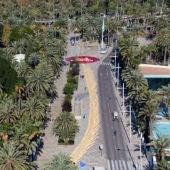 Imágenes aéreas tomadas por un dron de la Policía Local de Elche de la palma blanca formada en el Paseo de la Estación.
