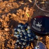 Uvas y vino D O Mancha