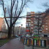 Fuertes rachas de viento destrozan árboles en Alcalá de Henares