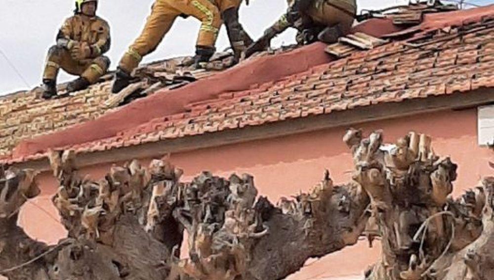 Detalle de la actuación de los bomberos en Catral