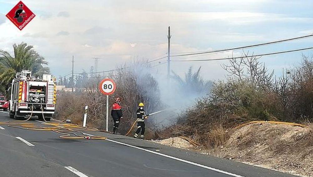 Los bomberos sofocan el incendio declarado en un vivero de palmeras de Albatera