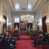 Pleno Ayuntamiento de Alcalá de Henares