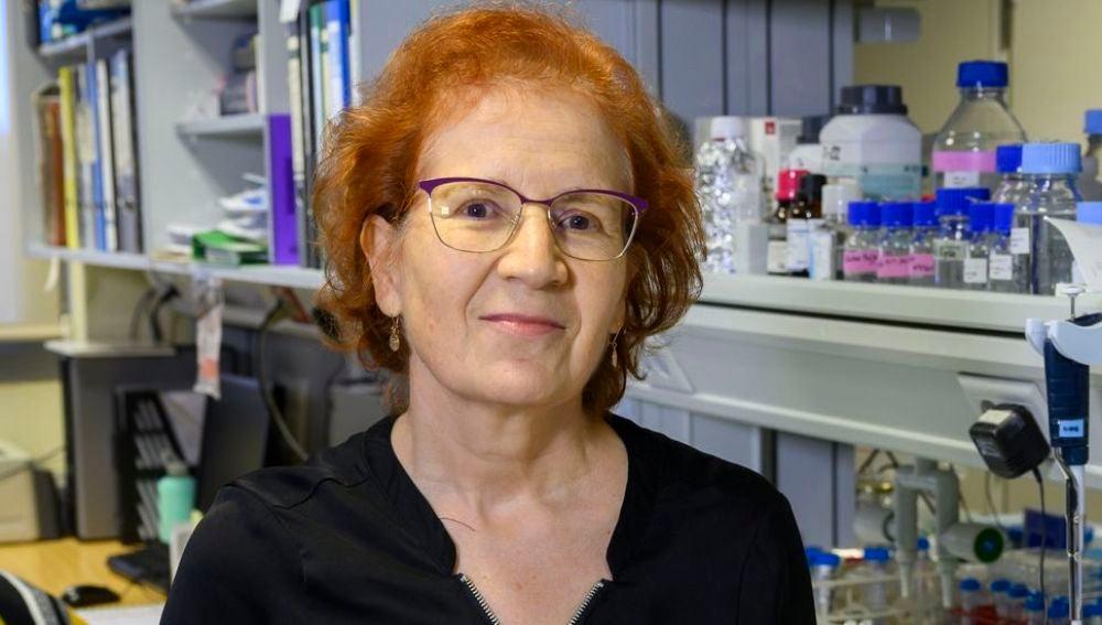 Margarita del Val, viróloga e investigadora del CSIC