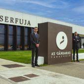 Serfuja repartirá rosas este San Valentín en el centro de Lugo