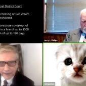 """""""No soy un gato"""": el percance viral de un abogado en Zoom durante una audiencia virtual"""