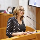 La consejera Mayte Pérez ha presentado los detalles de la ley durante el pleno