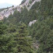 Sierra Nieves Marbella