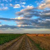 Un campo agrícola
