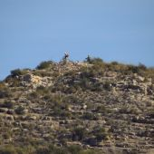 Dos ciclistas en la cima del Catellar, en el entorno del Pantano de Elche.