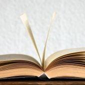 Imagen de archivo de un diccionario
