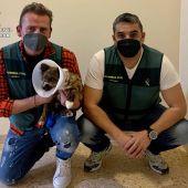 El perro maltratado con dos agentes