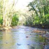 Una imagen del río Piloña