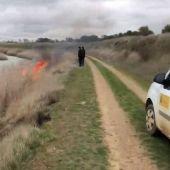 Vídeo: La Asociación de Naturalistas Palentinos denuncia a la Confederación Hidrográfica del Duero por llevar a cabo quemas incontroladas en el Canal de Castilla