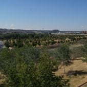Real Jardín Botánico Juan Carlos I