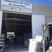 Formentera lanza sus ayudas extraordinarias para alimentación del ganado