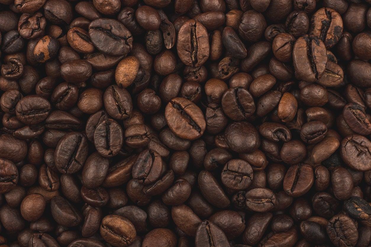 Fronteras del futuro: Casas ecológicas hechas con cáscaras de café