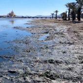 Fangos en la playa de Los Urrutias del Mar Menor