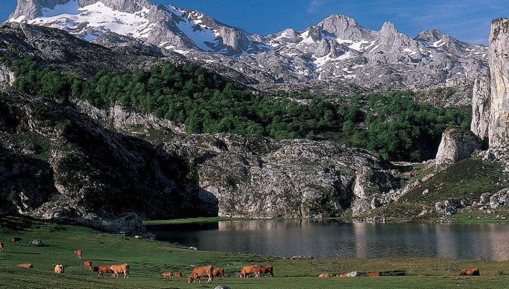 Desde el Consistorio se recuerda su papel en las decisiones sobre el Parque de Picos