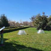 El cambio climático, a examen en el Jardín Botánico ubicado en Albacete