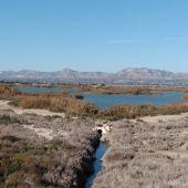 Parque natural de El Hondo.