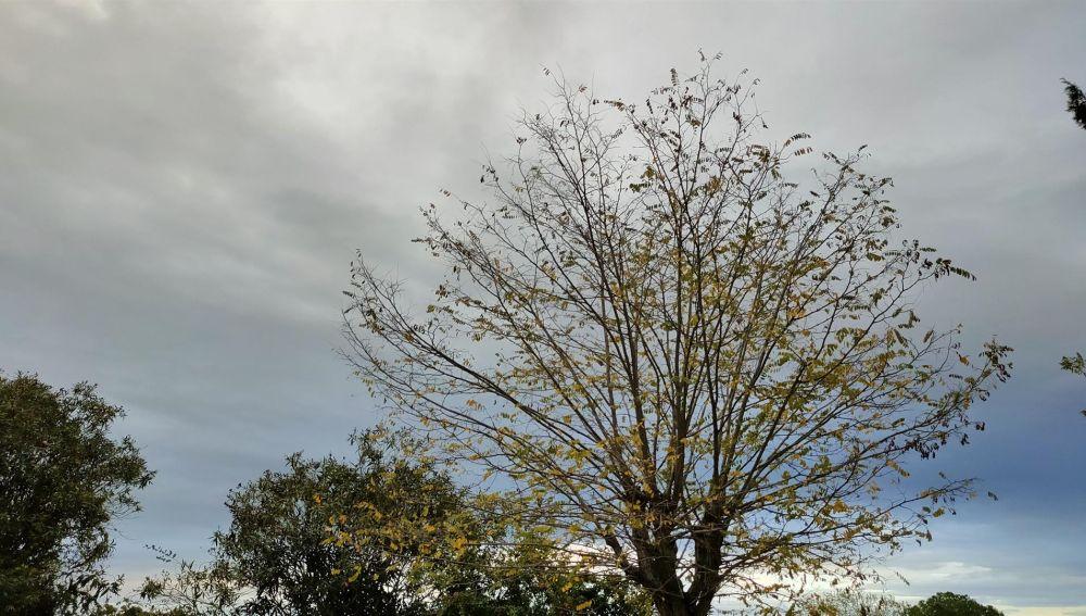 Las temperaturas aumentarán durante esta semana en Baleares, pero se prevé un fin de semana con precipitaciones débiles