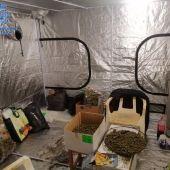 Uno de los registros de la Operación Dátil de la Policía Nacional contra el tráfico de marihuana