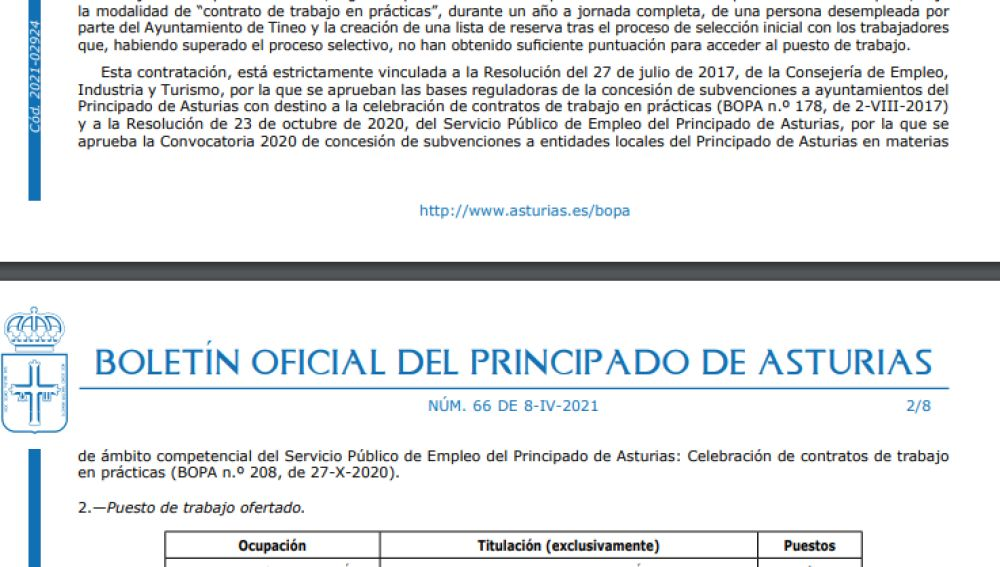 Tineo ofrece un contrato de un año para un Técnico Administrativo