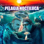 Pelagia Noctiluca