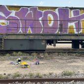La Policía Local identifica a los autores de los grafitis realizados en dos vagones de un tren en Elche