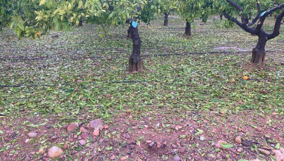 Las tormentas y el granizo dejan daños importantes en localidades de la Plana Baixa.