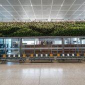 Jardines verticales Aeropuerto de Málaga