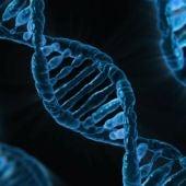 No las vacunas contra la covid 19 no cambian tu ADN